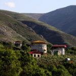 پیشروی ویلاها در جنگلهای مازندران